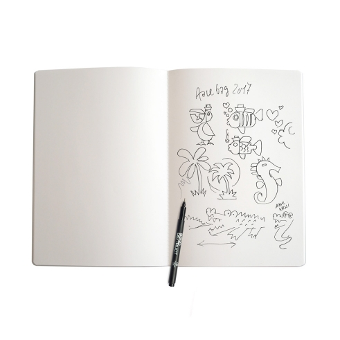 BD Sketchbooklet L Aqua open