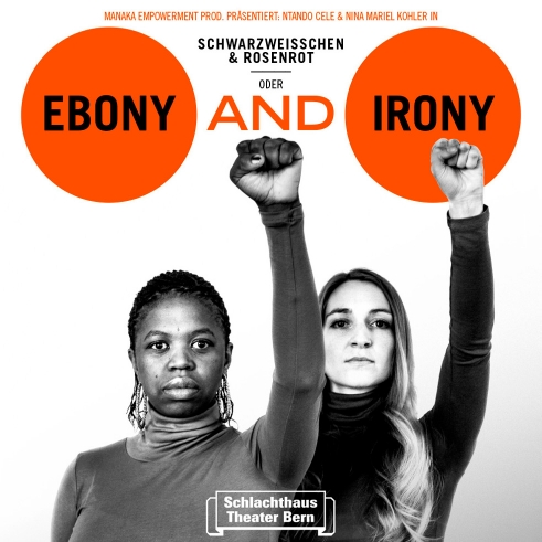 Ebony and Irony poster
